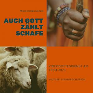 Misericordias Domini – Auch Gott zählt Schafe