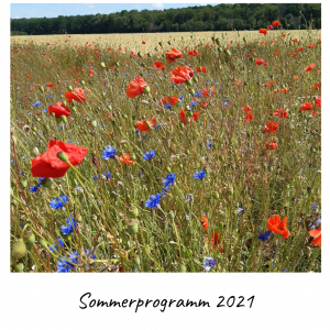 Sommerprogramm